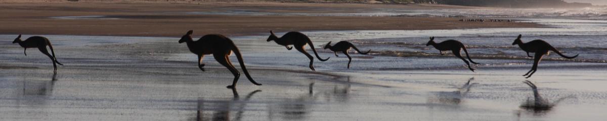 Playlist image Australia